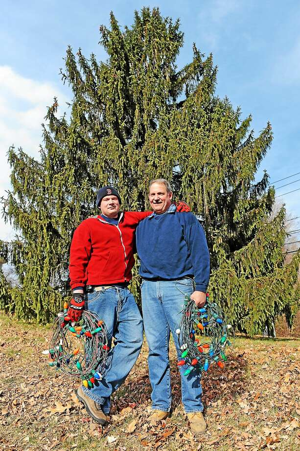 Tom Carlson and his son Scott set up the lights on Nov. 22. The holiday tree on the Higganum Town Green is lit on Thanksgiving Day evening. Photo: Olivia Drake — Special To The Press