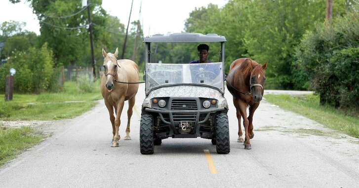 B.J. Foster drives his two-horsepower utility vehicle as he leads Diamond, left, and Princess back to their stalls in Rosharon. At one time, the standout Angleton football player had thoughts of becoming a rodeo cowboy.