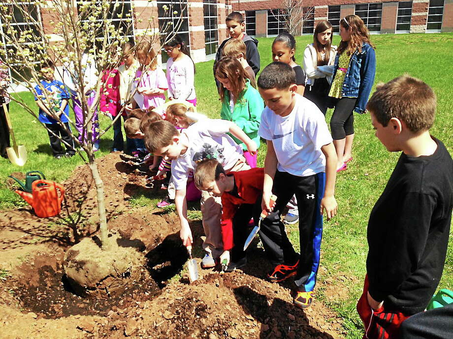 Jeff Mill - The Middletown Press Members of the Woodside Intermediate Schoolís Earth Club planted a tree Friday in honor of Arbor Day in Cromwell. Photo: Journal Register Co.
