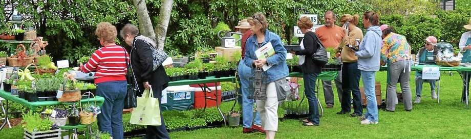 Contributed photos The Essex May Market is May 10 rain or shine. Photo: Journal Register Co.