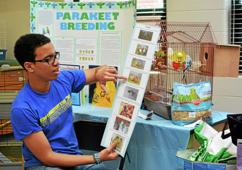 Middletown High School's vocational agriculture students hosted an open house Thursday and showed off animals, plants and other exhibits. Photo: Kaitlyn Schroyer — The Middletown Press
