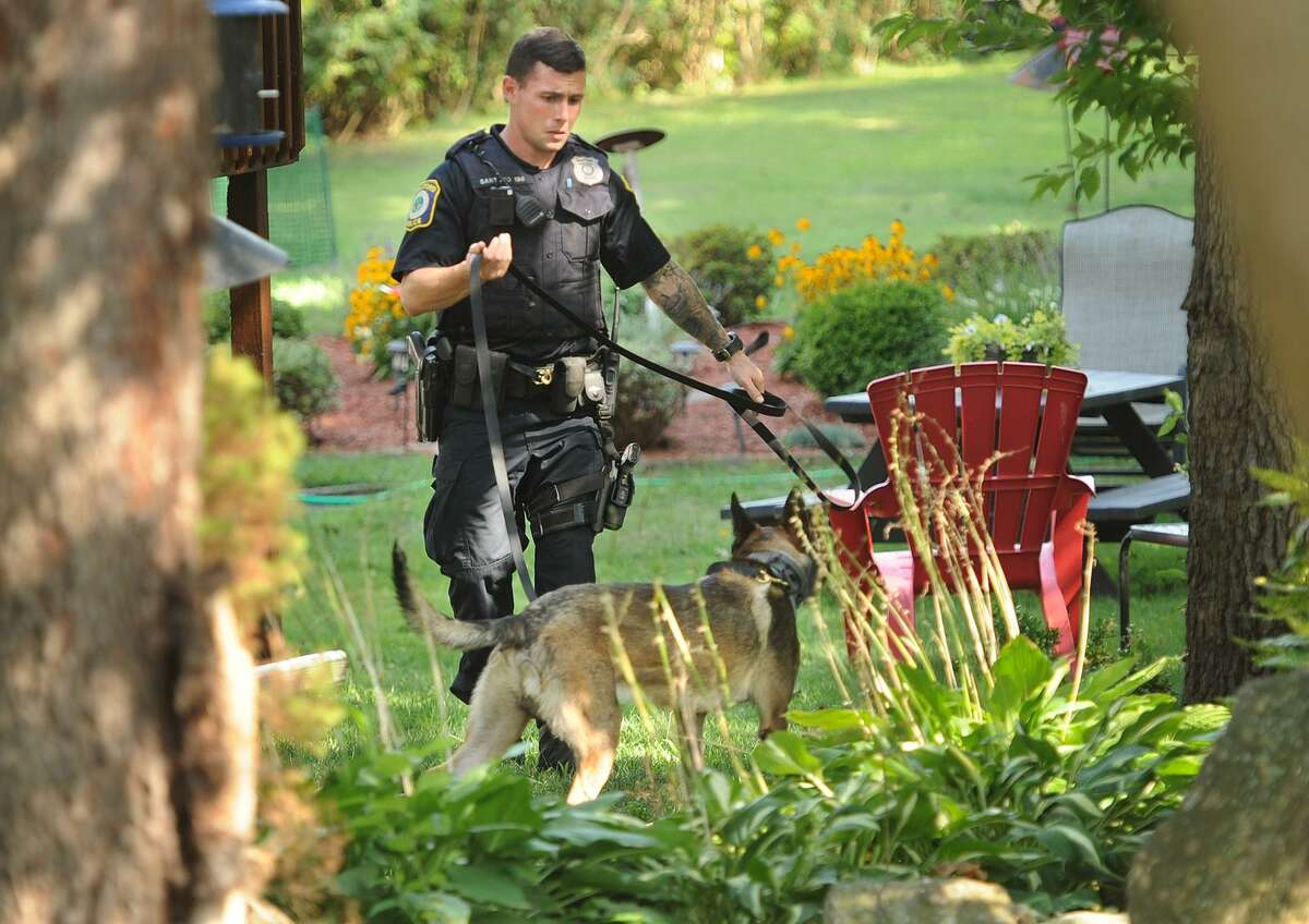 A Stratford police officer and police dog search a backyard near the site of a shooting outside a house on North Avenue on Sunday.