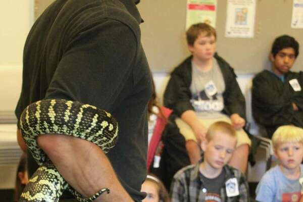 Nagini, the snake in Harry Potter lore, will be well represented in Wilton Library's Celebrating 20 Years of Harry Potter fundraiser from 9 a.m. to 3 p.m. on Tuesday, Aug. 29. The day-long camp will feature everything Harry Potter with potions, magical creatures, sorting hat and so much more.