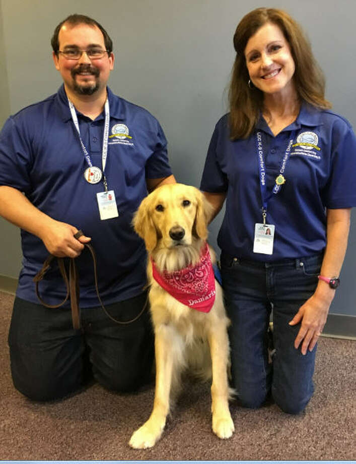 Damaris Comfort Dog joined the ministry of Memorial Lutheran Church-Katy about six months ago. Her handlers include Nathan Engman and Stacy Bretting. Photo: Karen Zurawski