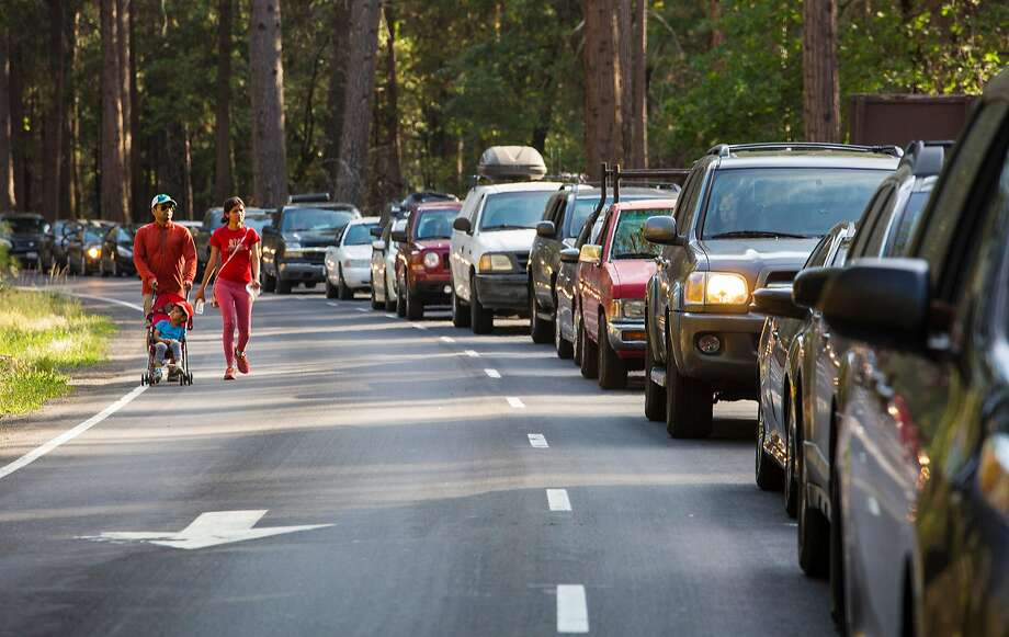 Traffic is at a standstill on the valley floor while a bus lane is empty and off-limits to visitors at Yosemite National Park July 15 2017. (Brian vander Brug/Los Angeles Times/TNS) Photo: Brian Van Der Brug, TNS