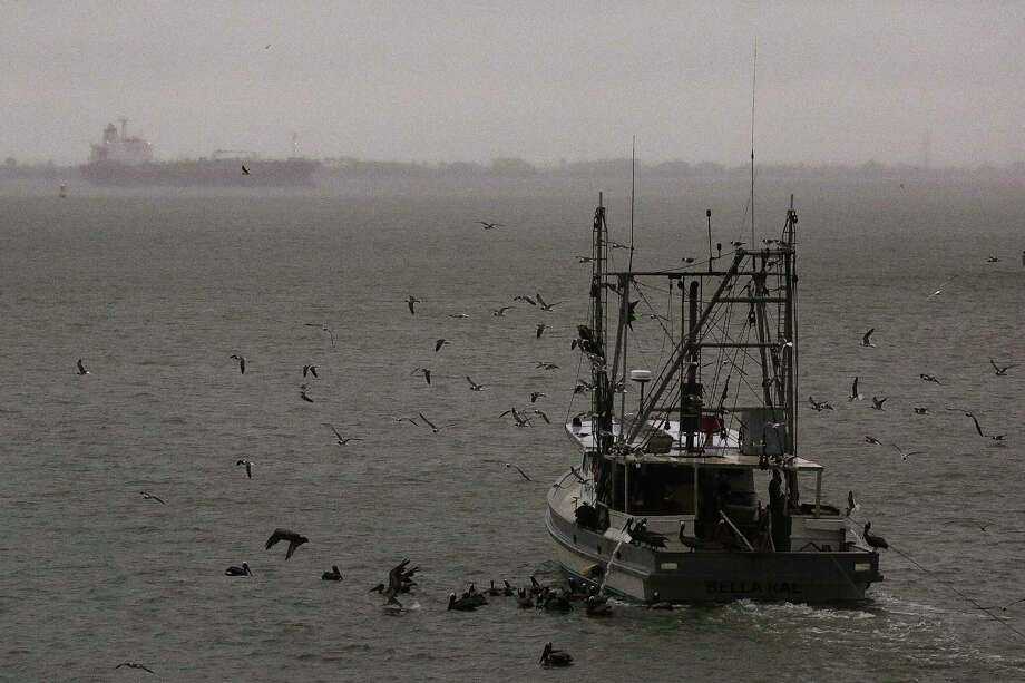 A shrimp boat makes its way through Galveston Bay the morning after Tropical Storm Cindy made landfall June 22  in Galveston. ( Michael Ciaglo / Houston Chronicle ) Photo: Michael Ciaglo, Staff / Michael Ciaglo