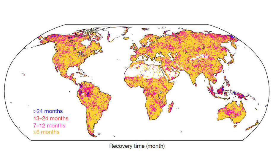 Global patterns of drought recovery time, in months. The longest recovery times are depicted in shades of blue and pink, with the shortest recovery times in yellow. White areas indicate water, barren lands, or regions that did not experience a drought during the study period. Photo: Woods Hole Research Center