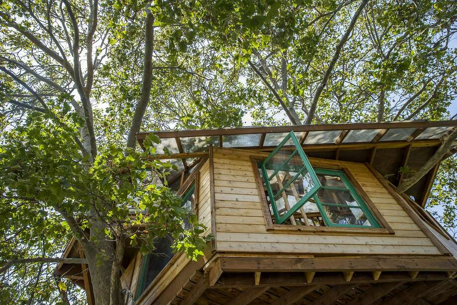Two years ago, Puneet Sandhu commissioned this tree house from builder Dustin Feider. Photo: Santiago Mejia, The Chronicle