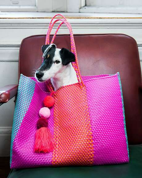 The author's dog, Stella, poses in a bag from Mexico named the Stella bag. Photo: Saroyan Humphrey