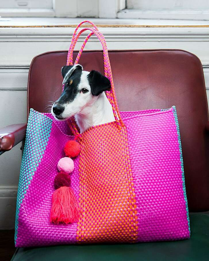 The author's dog, Stella, poses in her Anna bag.