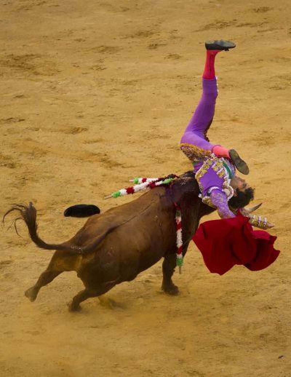 Spain's bullfighter Jose Tomas flips up and down after being pushed by an El Pilar ranch fighting bull during a bullfight, in Valencia, Spain, Saturday, July 23, 2011. Tomas, one of Spain's top matadors known for a daring bullfighting style, came back to the bullring after a year recovering from a goring in Mexico that almost cost him his life.(AP Photo/Daniel Ochoa de Olza)
