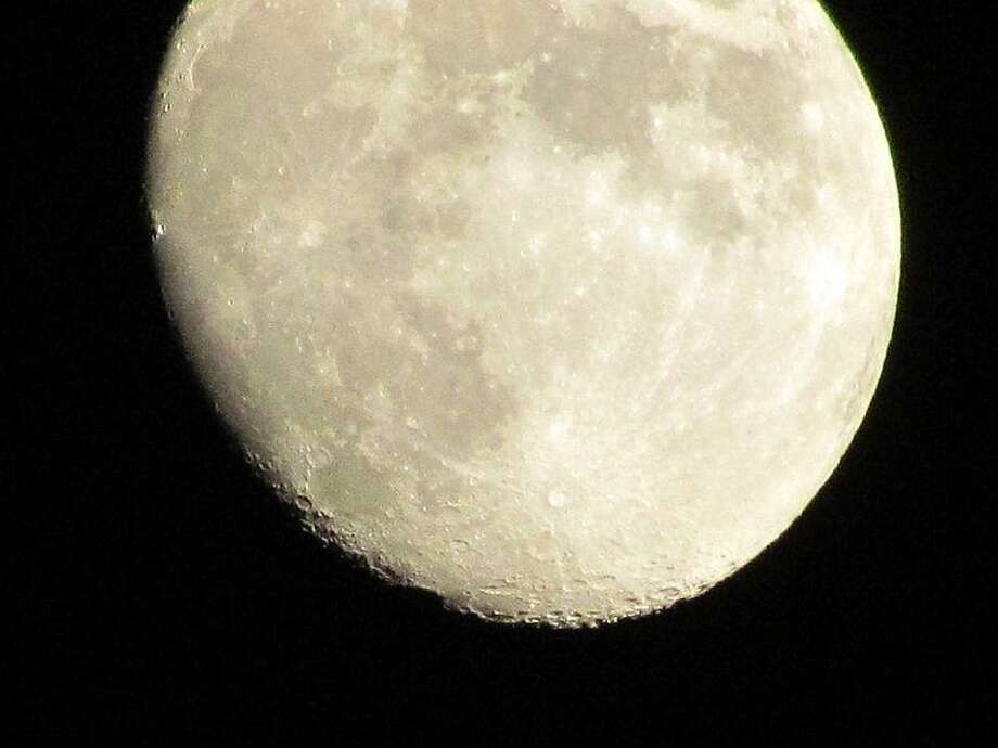 Wikimedia: Ansonia Nature Center has a full moon hike this weekend.