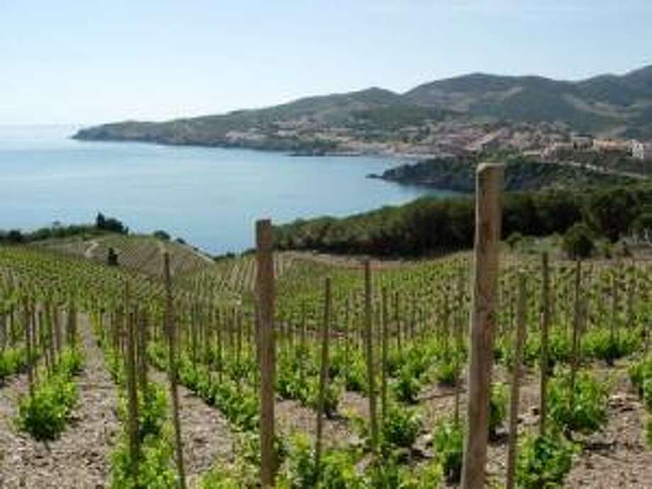 Some of the vineyards in Banyuls, in southern France, overlook the Mediterranean. Photo courtesy Steven Jankowski Photo: Steven Jankowski / Steven Jankowski