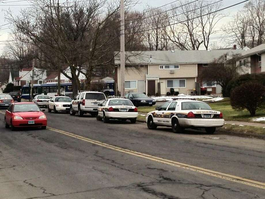 A row of police cars on Eastern Street in New Haven where officers are investigating a reported shooting Friday. Rich Scinto/Register