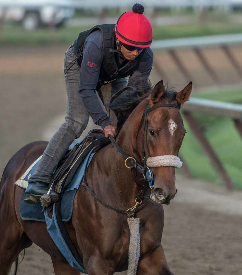 Holy Helena stretches her legs on the Oklahoma Training Center Track early Wednesday Aug. 16, 2017 as she prepares for Saturday's Alabama Stakes in Saratoga Springs, N.Y.  (Skip Dickstein/Times Union) Photo: SKIP DICKSTEIN
