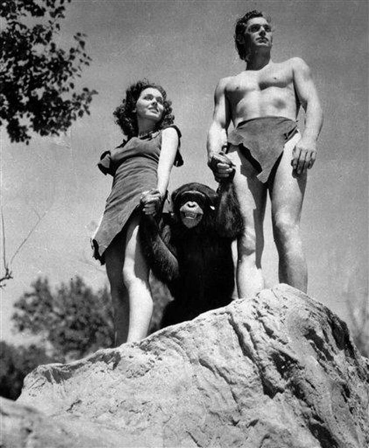 FILE - A file photo shows Johnny Weissmuller, right, as Tarzan, Maureen O'Sullivan as Jane, and Cheetah the chimpanzee, in a scene from the 1932 movie Tarzan the Ape Man. A Florida animal sanctuary says Cheetah the chimpanzee from the Tarzan movies of the 1930s died Cheetah died on Dec. 24 of kidney failure at age 80. (AP Photo/ho, File) Photo: ASSOCIATED PRESS / AP2011