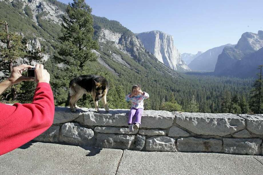 Associated Press file photo: Yosemite National Park will cut down thousands of trees to preserve the iconic views of the park's waterfalls and the craggy Photo: ASSOCIATED PRESS / AP2008
