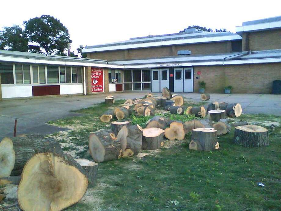 Only pieces remain of the picturesque trees that once shaded the Derby High School courtyard.