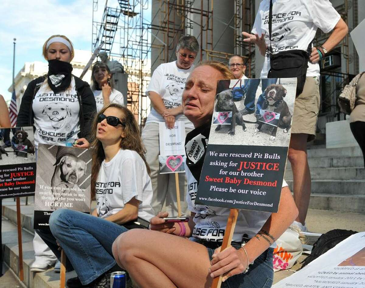 """Jessica Hamilton of East Lyme, cries, as she hears that there was a continuance in the hearing for Alex Wullaert, a Branford man who confessed to strangling his dog, """"Desmond."""" Dozens of protesters were on hand outside the Superior Court to show support for the animal. Peter Casolino/New Haven Register"""