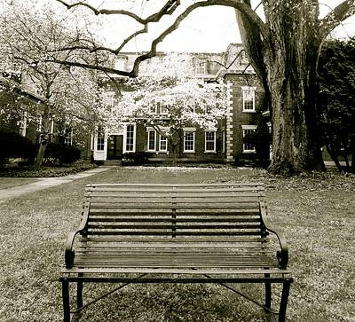 Alexandria Pisarczyk's winning photo for the Oneida Community Mansion House's photography contest.