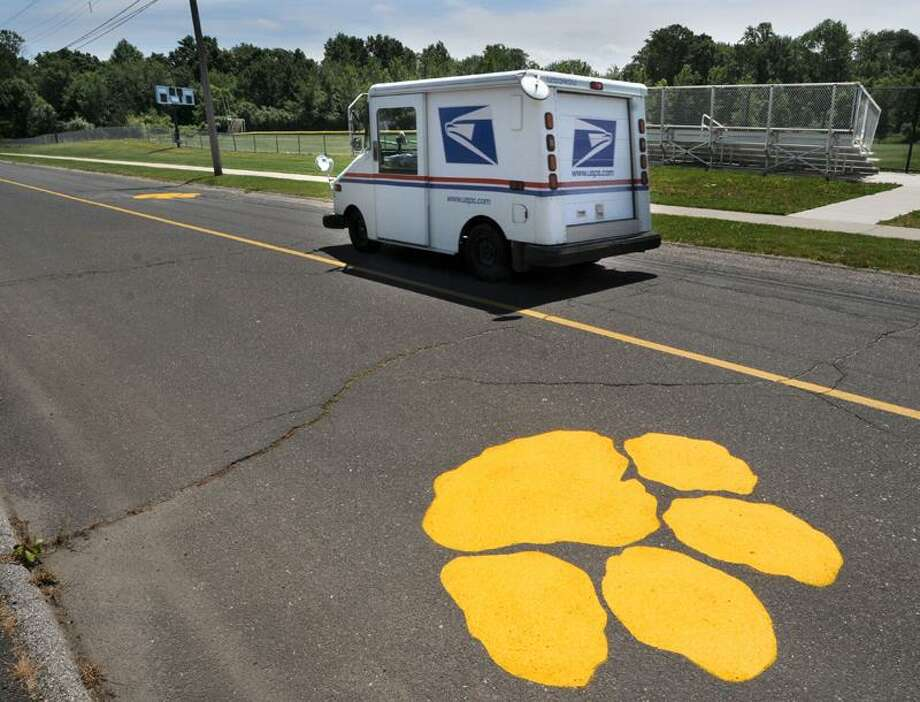 Paw prints were painted on the driveway to Seymour High School (the school mascot is the wildcat). Mara Lavitt/New Haven Register