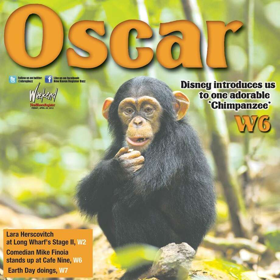 """Disneynature photo: """"The Chimpanzee"""" opens this weekend in area theaters."""