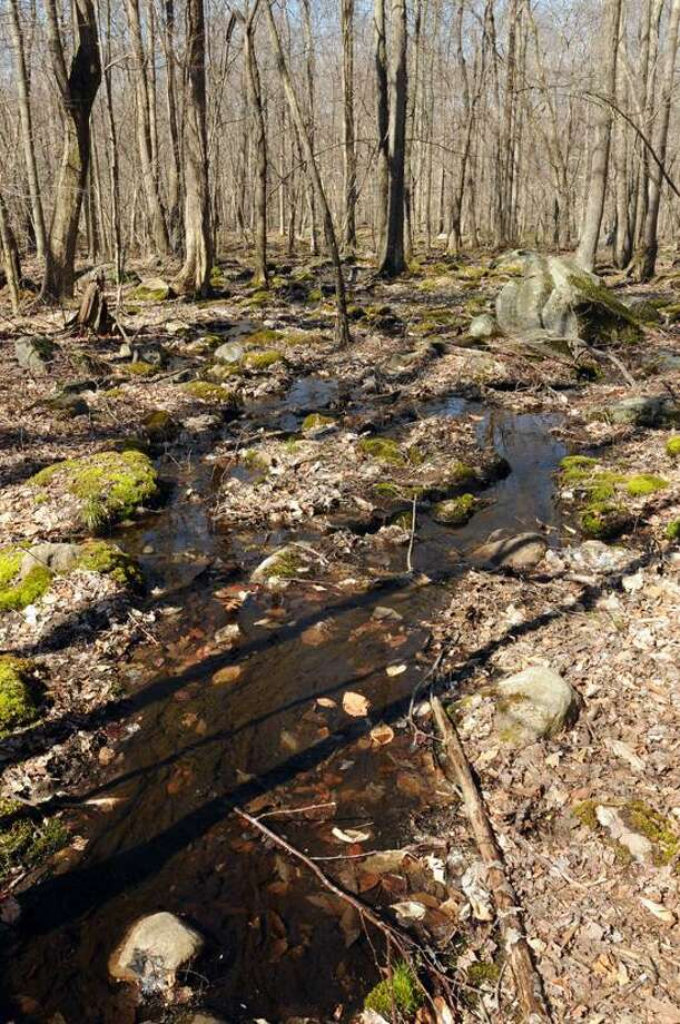 Mara Lavitt/Register photo: The East River Preserve is part of the former Goss property in Guilford.