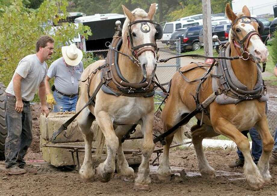 The horse pull is one of the Durham Fair's most popular events. Contributed photo.