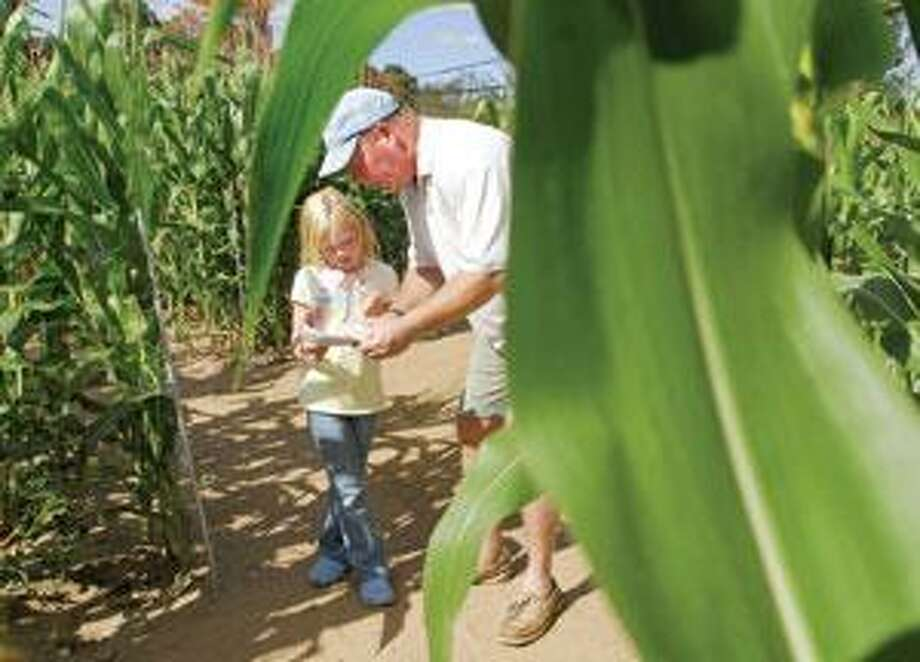 Marcus Bulmer and daughter Samantha, 8, of Virginia took time out from visiting relatives in Durham to navigate the maze. (Peter Hvizdak)