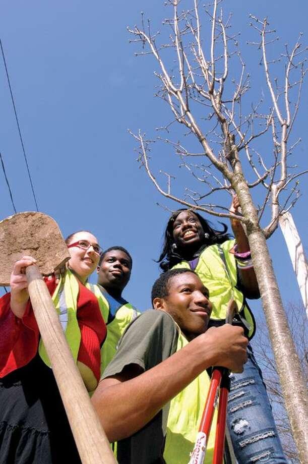From left, Common Ground High School students Cheryl Bedard, 17, Joseph Stoudmire Jr., 16, Terrance Walker, 16, and Doris Jean Teel, 16, plant a tree on Edgewood Way in New Haven. Peter Hvizdak/Register
