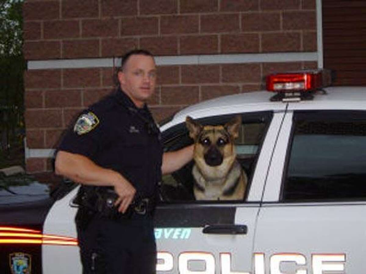 West Haven police Officer Scott Bloom poses with police dog Onyx. (Photo courtesy of West Haven Police Department)