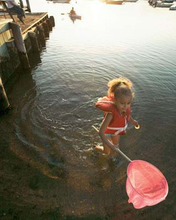 Shine Andersen, 5, of New York, N.Y., carries a fish net as she wades in Nashaquitsa Pond, in Nashaquitsa, on the island of Martha's Vineyard, Mass. Decades before President Barack Obama's expected visit this month, Martha's Vineyard was a summer sanctuary for middle-class black families unwelcome elsewhere. (Associated Press photos)