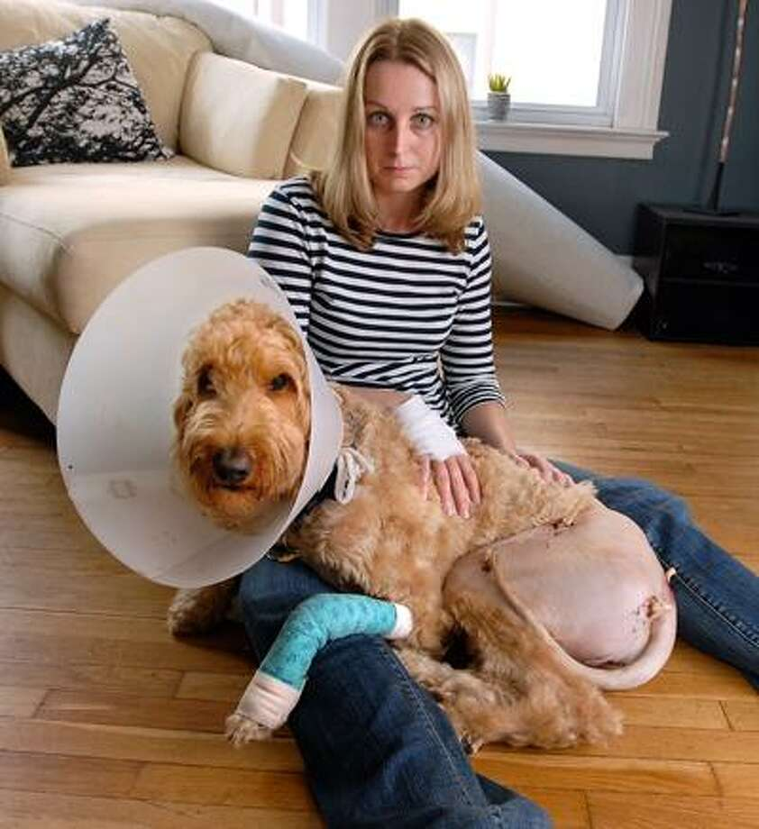 """Hope Klug, along with her 2-year-old Goldern Retriever/Poodle mix, """"Aiden"""" are both recovering from an attack by a Pit Bull that got away from it's owner. (Photo/Peter Casolino)"""