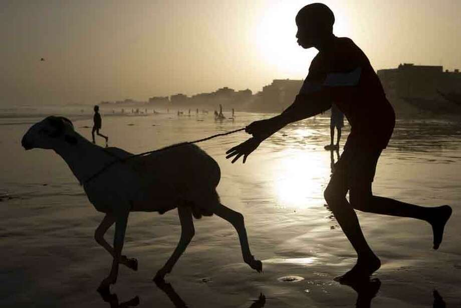 A boy chases a ram into the Atlantic Ocean as residents wash their sheep before sacrifice, in preparation for the Eid al-Adha feast in Dakar, Senegal, Friday, Oct. 26, 2012. The Eid al-Adha festival, known locally as Tabaski, celebrates Abraham's willingness to sacrifice his son. (AP Photo/Rebecca Blackwell) Photo: AP / AP