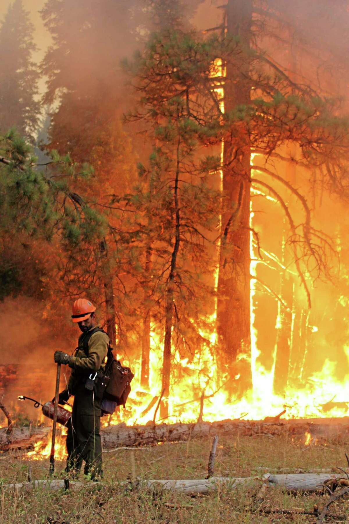 In this photo provided by the U.S. Forest Service, fire crew members stand watch near a controlled burn operation as they fight the Rim Fire near Yosemite National Park in California Monday, Sept. 2, 2013. The massive wildfire is now 75 percent contained according to a state fire spokesman. (AP Photo/U.S. Forest Service, Mike McMillan)