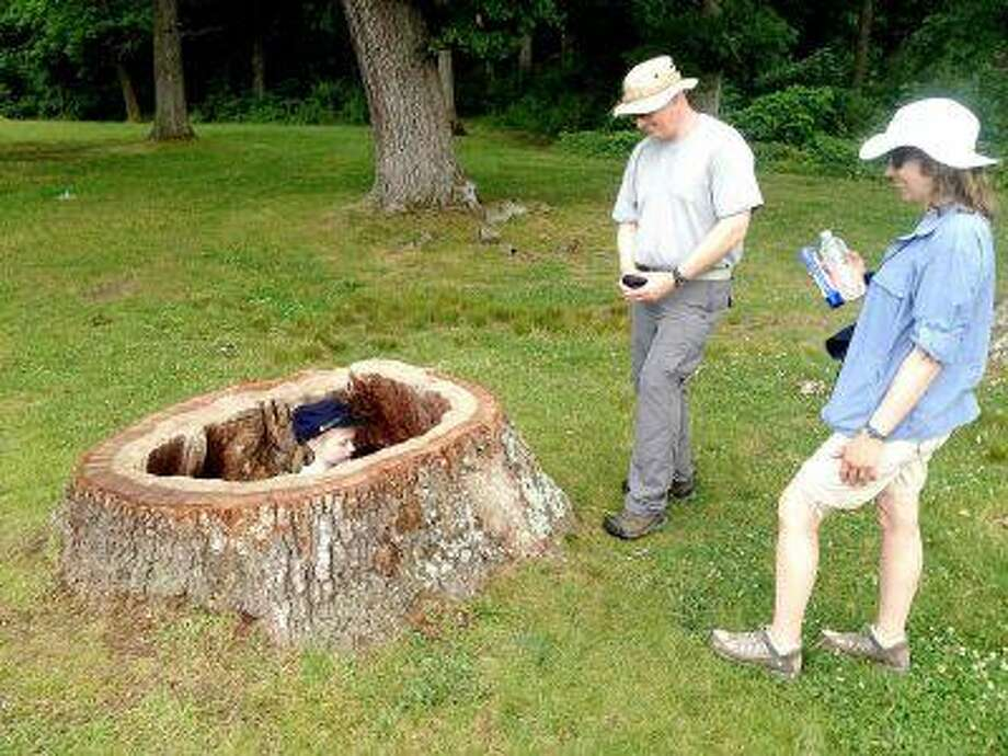 Laurel Stewart, 7, plays in the hollow stump of a former witness tree on the Gettysburg battlefield Friday as her parents, John and Maryann Stewart, look on. John Stewart, of Long Island, N.Y., is a deputy chief ranger at Fire Island National Seashore.