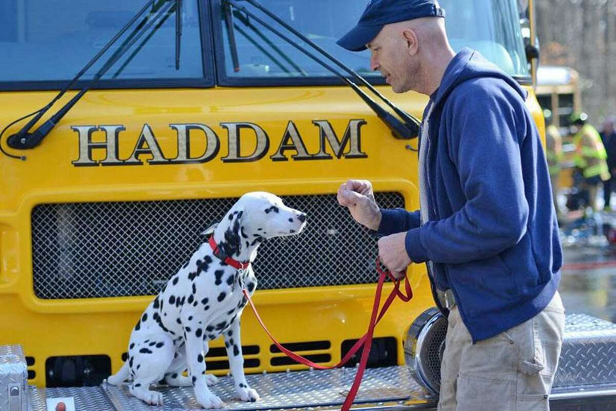 Haddam Volunteer Fire Co.'s 2nd Assistant Chief Bob Norton and his Dalmatian Booster.