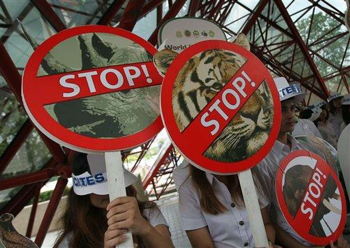 """Thai activists hold signs against illegal wildlife trade during the Convention on International Trade in Endangered Species, or CITES, in Bangkok Sunday, March. 3, 2013. How to slow the slaughter and curb the trade in """"blood ivory"""" will be among the most critical issues up for debate at the 177-nation Convention on International Trade in Endangered Species, that gets under way Sunday in Bangkok. And the meeting's host, Thailand, will be under particular pressure to take action.(AP Photo/Sakchai Lalit)"""