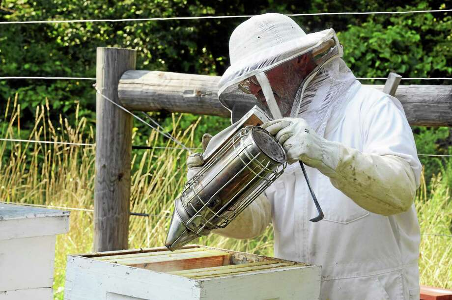 Photographs by Laurie Gaboardi beekeeper and bees Photo: Journal Register Co.