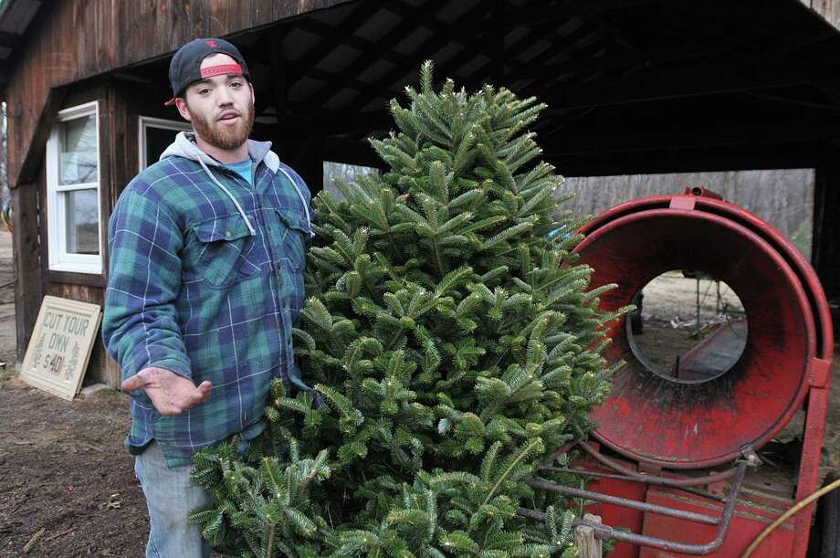 Max Dumas, of Dumas Tree Farm in Middlefield talks about proper disposal of your Christmas tree Tuesday afternoon. Max, a third generation tree farmer suggests contacting local organizations like Troop 270 in Durham for their annual Christmas Tree Pick-Up fundraiser if you live in the Durham, Middlefield, Rockfall and surrounding area. Pick ups are scheduled for Saturdays, December 28, January 4 and January 11. Email Troop270DurhamCT@aol.com or call 860-349-2370 to schedule a pick up. Catherine Avalone - The Middletown Press Photo: Journal Register Co. / TheMiddletownPress