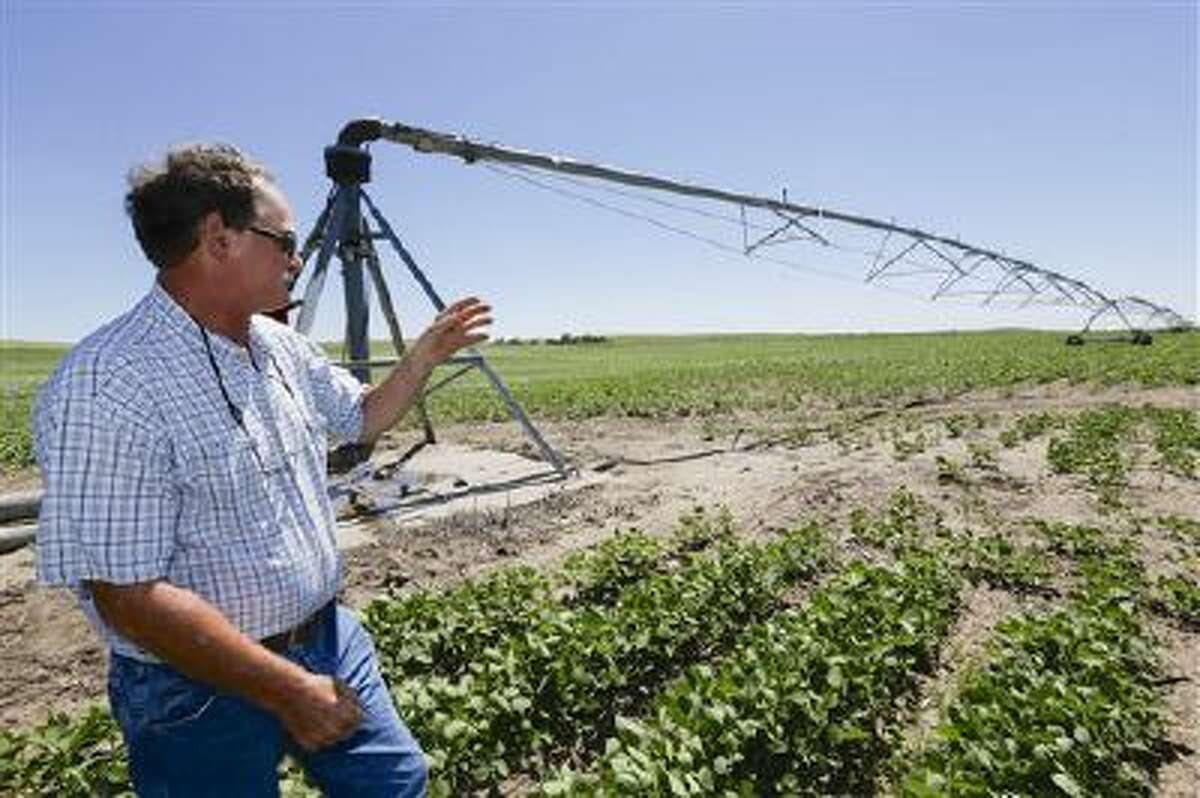 In a June 28, 2013, photo farmer Jim Carlson of Silver Creek, Neb., stands in a field of soy beans near a pivot irrigator. A report released Tuesday July 23, 2013 for the Nebraska Farm Bureau says irrigation was worth $11 billion to the state in agricultural production during the drought last year.