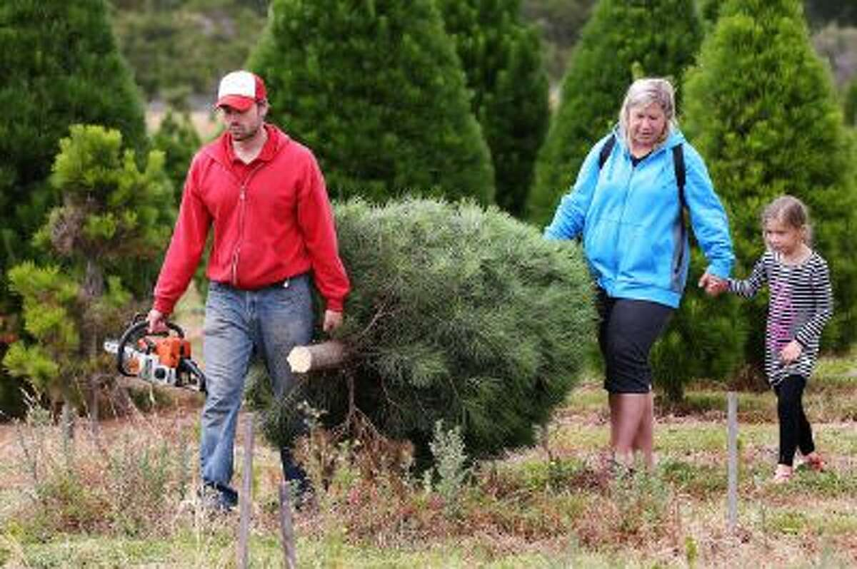 Customers carry their Christmas tree to be taken home on December 16, 2013 in Melbourne, Australia.