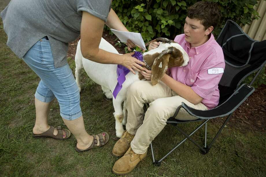 Joel Myers of Breckenridge sits with his 4-H goat, El Toro Loco, before the Midland County Fair small animal auction on Wednesday, August 16, 2017 at the Midland County Fairgrounds. Photo: (Katy Kildee/kkildee@mdn.net)