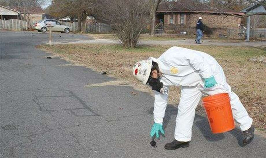 A worker with U.S. Environmental Services, a private contractor, picks up a dead bird in Beebe, Ark. on Saturday, Jan. 1, 2011 as more can be seen on the street behind him. The Arkansas Game and Fish Commission said Saturday more than 1,000 dead black birds fell from the sky in Beebe. The agency said its enforcement officers began receiving reports about the dead birds about 11:30 p.m. Friday. (AP Photo/The Daily Citizen, Warren Watkins) Photo: AP / The Daily Citizen