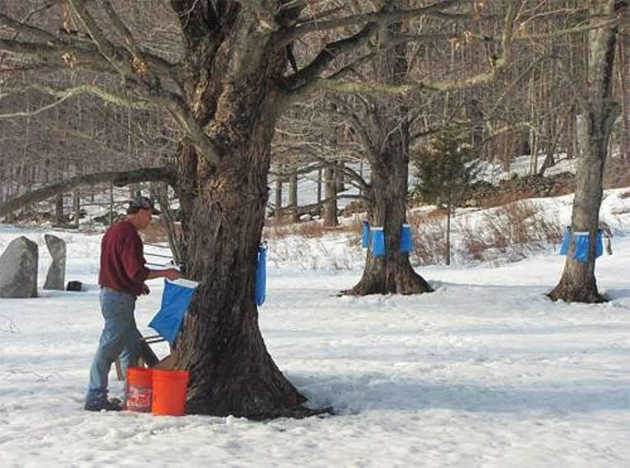 Rick Walker, owner and operator of Rick's Sugar Shack, learned the maple sugaring process while growing up in New Hampshire. He has been producing maple syrup in Connecticut for over 15 years.
