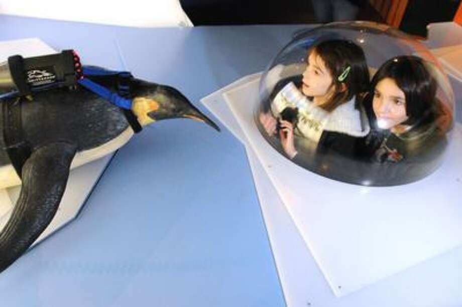 Frost Infante, 8, and her brother North Infante, 10, get a look at a crittercam strapped to a model penguin at Mystic Aquarium.(Brad Horrigan/Journal Register News Service)