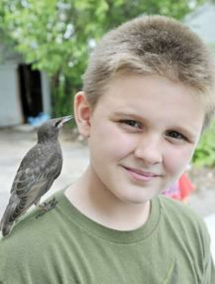 "MORNING JOURNAL/ANNA NORRIS Jaemen Reynard, 10, of Lorain, has befriended a wild bird after it landed on the core of an apple Reynard finished eating. Reynard has named the bird ""Scraggy"" and is able to feed and handle the bird."
