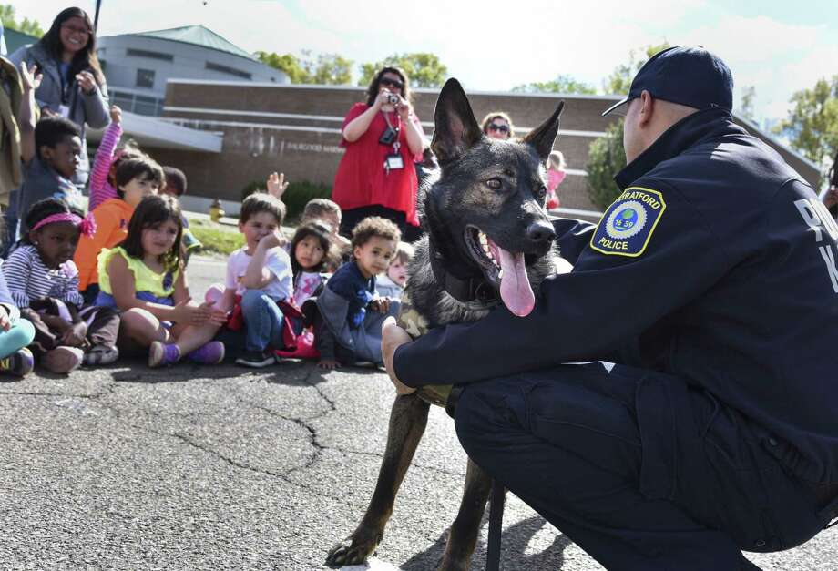 Stratford Police dog Hex meets students at Six to Six Magnet School in Bridgeport, Conn. on Friday, May 12, 2017. The school's student council fundraised $1,200 for Hex's new vest by selling carnations and organizing a school dance. Photo: Bailey Wright / For Hearst Connecticut Media / Connecticut Post Freelance