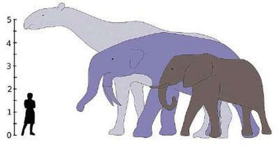 Illustration courtesy IMPPS group, University of New Mexico