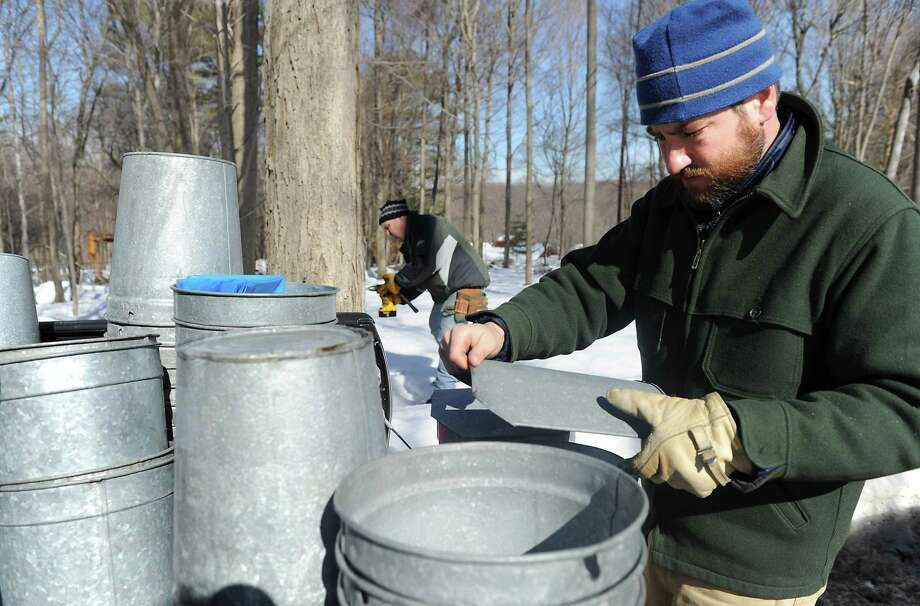 In this Feb. 11, photo, Allan Klumac, left, a volunteer at the Nature Center, assists Will Kies, Director of Education at the Stamford Museum and Nature Center, as they tap sugar maple trees at Heckscher Farm in Stamford, Conn.  (AP Photo/Stamford Advocate, Kathleen O'Rourke) Photo: AP / Stamford Advocate